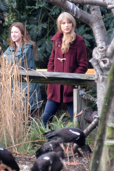 Taylor Swift gets a VIP tour of the London Zoo