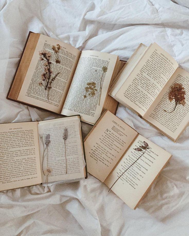 Vintage Books And Pressed Flowers Vintage Books Book Aesthetic Pressed Flowers