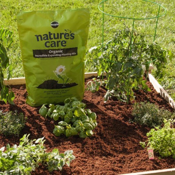 Compacted Potting Soil Triples Its Volume When Moistened