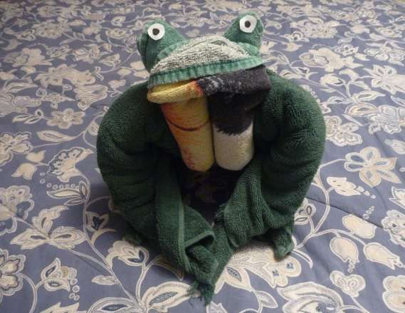 Towel Origami – How to Fold a Towel Frog