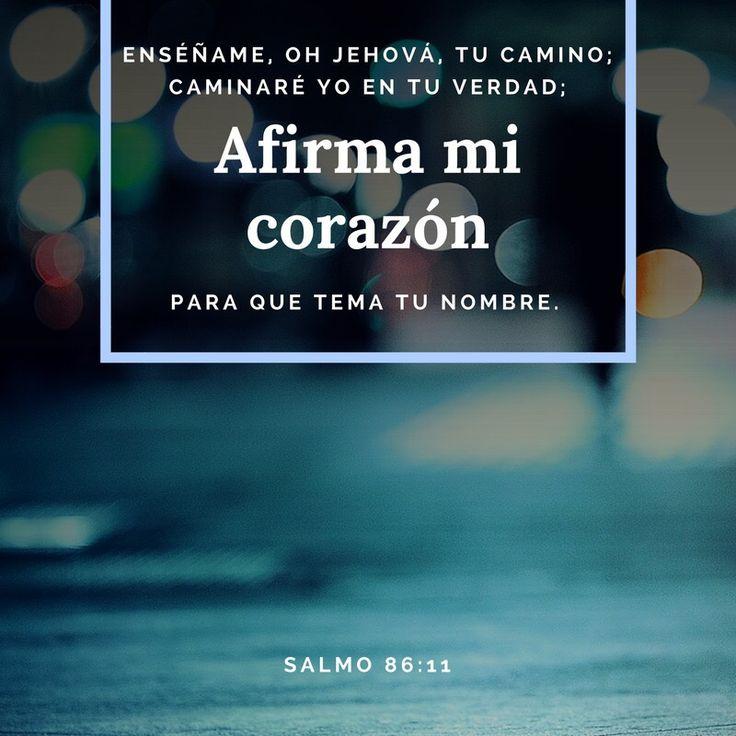 Enséñame, oh Jehová, tu camino; caminaré yo en tu verdad; afirma mi corazón para que tema tu nombre  Salmo 86:11 No temas