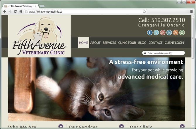 It was essential for Fifth Avenue Veterinary Clinic to have a website that represented the philosophy and modern style of their brand new clinic in Orangeville, Ontario. The company enlisted the services of Mocoda Interactive, which was selected based on their vast experience with veterinary clinics and proven ability to design truly modern websites that capture the essence of the companies with which they work.