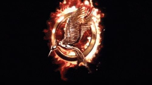 Catching Fire to Mockingjay pin (gif)