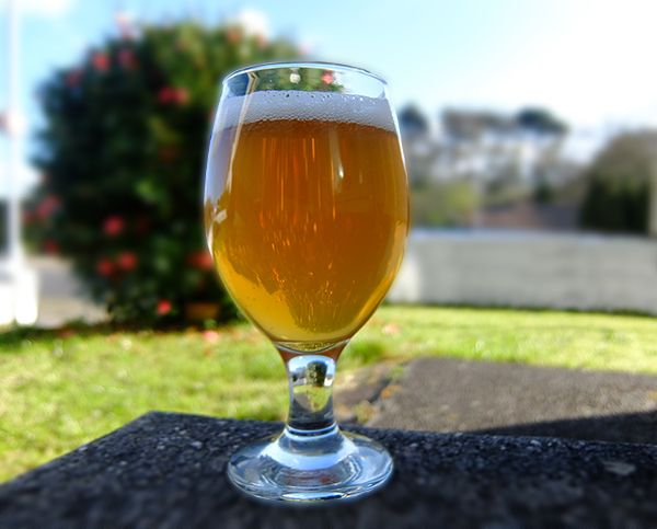 NEIPA or New England IPA, a tropical fruit laden, murky and silky smooth beer style has captured the hearts and minds of craft beer devotees for quite a while now. It is now gaining attention outside of this niche with coverage in the national press. NEIPA, however, is still very much a beer style in its infancy and one that is still evolving. It is the perfect candidate for home brewers to brew in small batches exactly for this reason. If you like clarity in your beers then NEIPA is…