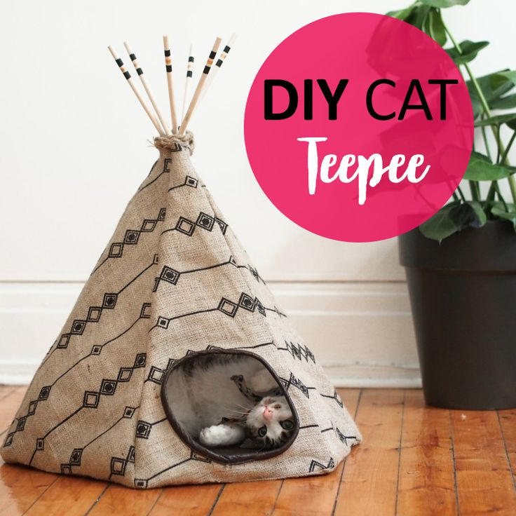 DIY+Cat+Teepee+Bed+and+Hiding+Spot