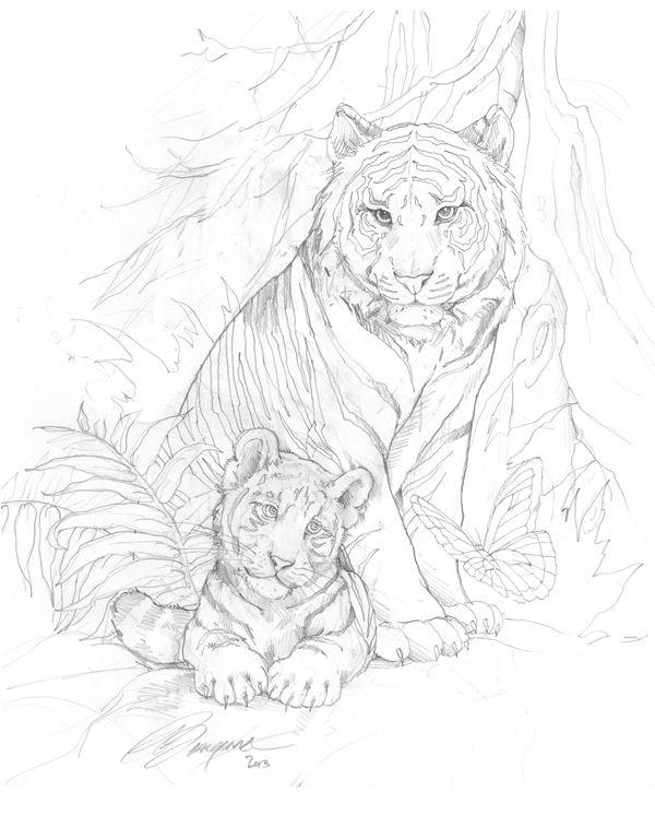Bergsma Gallery Press::Paintings::Originals::Original Sketches::2014/White Tigers - Original Sketch
