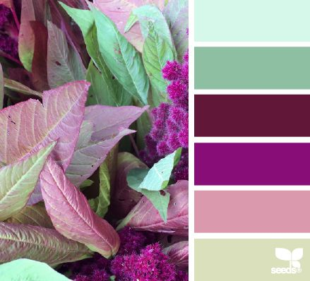 Nature Palette - http://design-seeds.com/index.php/home/entry/nature-palette3
