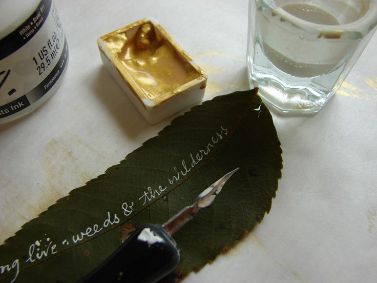 leaf: Thanksgiving Table, Leaf Quotes