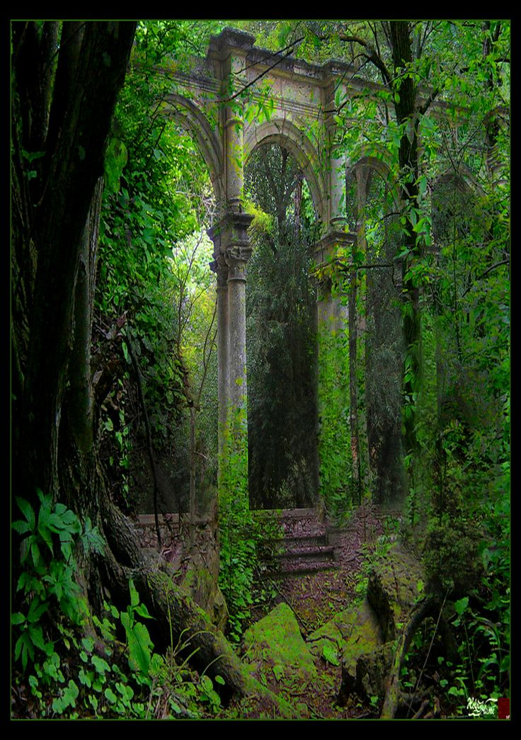 This is a magical place!  I would love to see it!