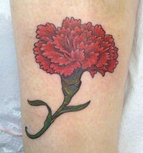 21 best carnation tattoos images on pinterest carnation for Red carnation tattoo