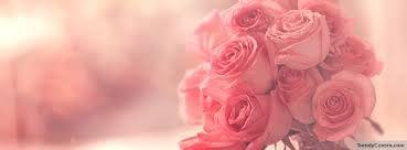 Bildergebnis für facebook titelbild pink