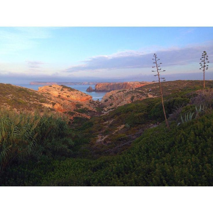 Viernes sagrado, viernes De Sagres! #portugal #sagres #surf #surfcamp #surfboard #mountains #cliff #sunrise #sun #s…