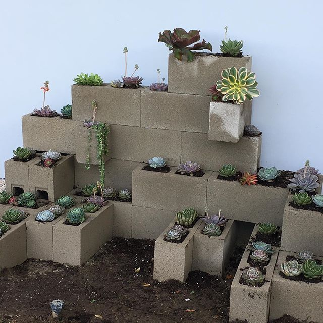 Cinder block planter in process.