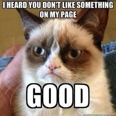 816 best Grumpy Cat images on Pinterest  Animal Cats and Fairy games