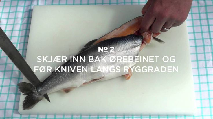Fiskeknep: Slik fileterer du laksefisk