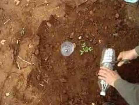 Irrigation solaire au goutte à goutte : une technique gratuite à la portée de tous - ecoloPop