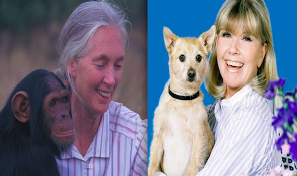 Animal Advocates Doris Day and Jane Goodall Share April 3rd Birthday. http://www.examiner.com/article/animal-advocates-doris-day-and-jane-goodall-share-april-3rd-birthday