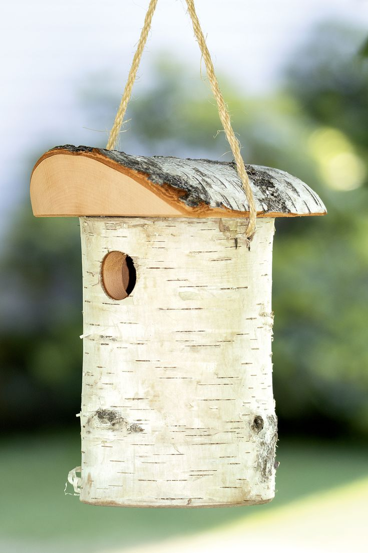 Rustic Birdhouses Best 421 Bird Houses Images On Pinterest Outdoors