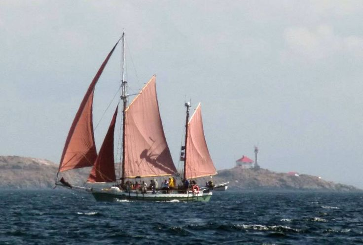 Tall Ship Thane sailing in The Victoria Classic Boat show. Trial Island in the back ground.