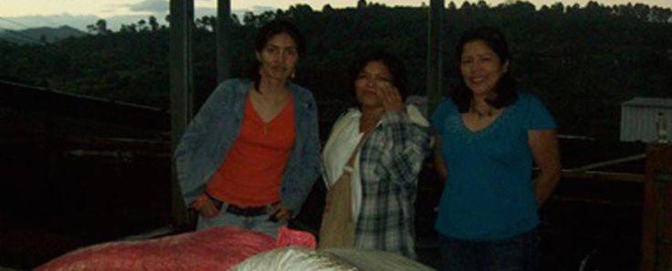 Honduras Manos de Mujer - Fair Trade, Shade Grown, Bird Friendly