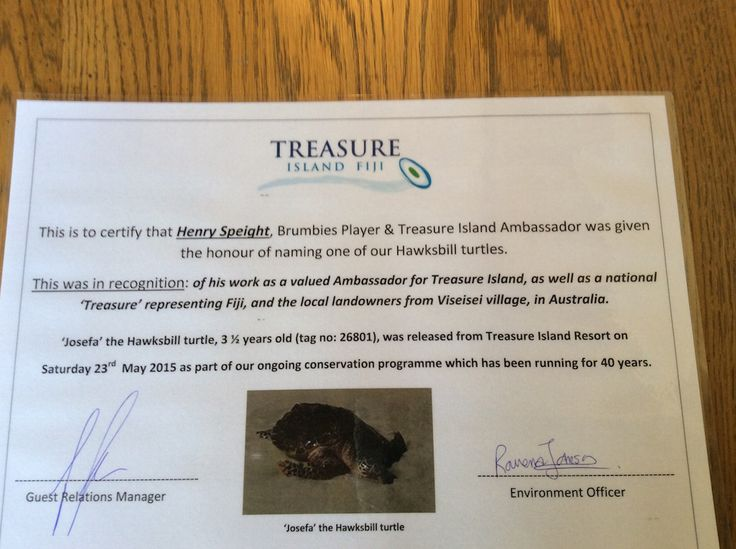 Henry's certificate