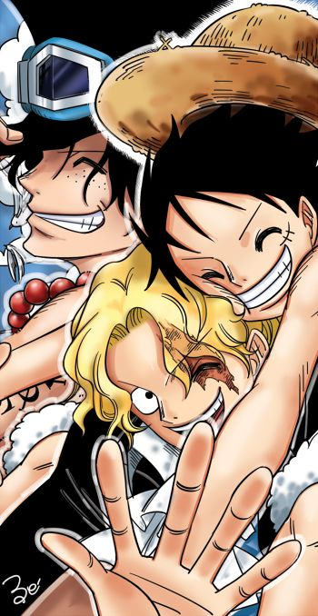 One Piece. Brothers: Portgas D. Ace, Monkey D. Luffy, & Sabo