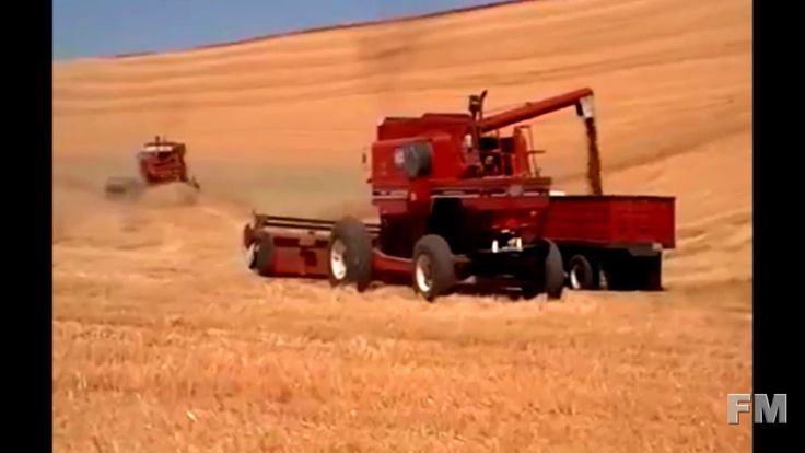 Wheat Harvest in Palouse, Washington, United States 2016. !FM!.