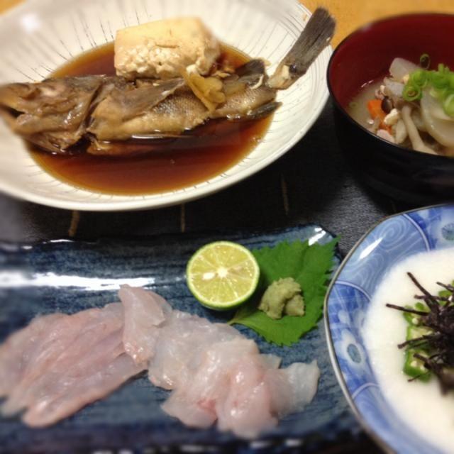 旦那がお客様から頂いたタヌキメバルを煮付けとお刺身に。美味しかったわ(*^o^*) - 22件のもぐもぐ - タヌキメバルの煮付け、タヌキメバルのお刺身、オクラとろろ、具だくさんの豚汁 by keiyan