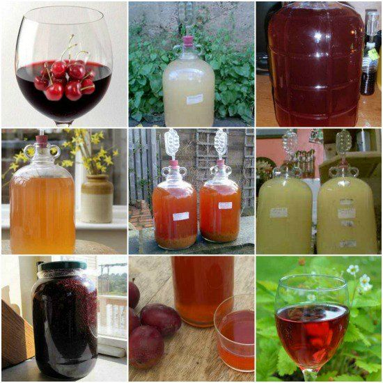 16 Best Fruit, Herb, And Vegetable Wine Recipes | Here's how to make your own delicious homemade wines.