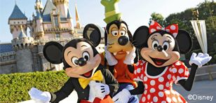 Disney resort Costco vacation packages