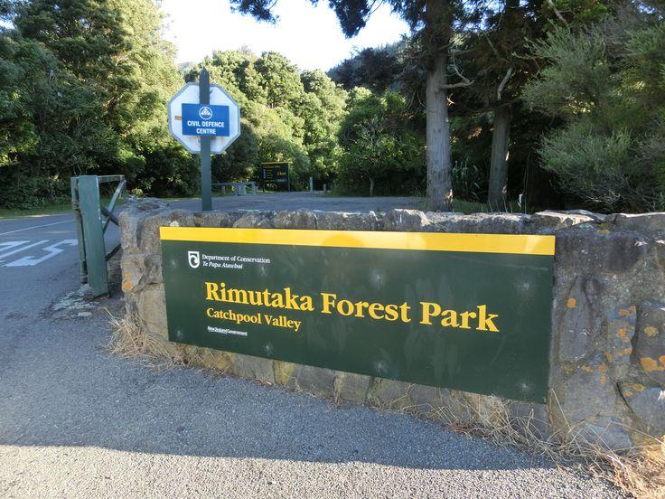 Rimutaka Forest Park, Wainuiomata Orongorongo River walk 09/Jan/2015
