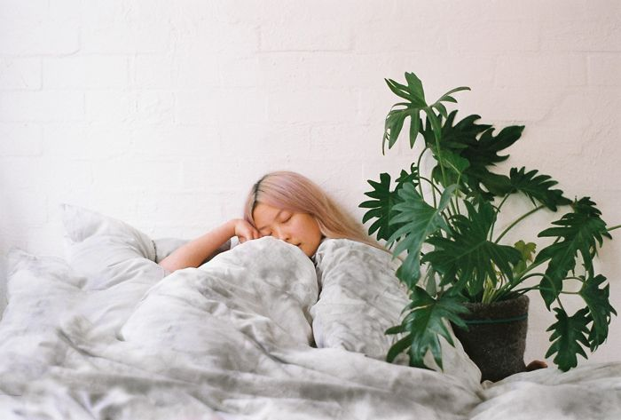 SUKU Lucidity Collection   Photo by Charlie Brophy #bamboo #bedding #plants #homewares