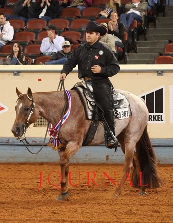 Vital Signs Are Good a.k.a Lucy, one of the best Western Riding horses ever....- Dont miss doing that stuff. Barrel Racing is better!