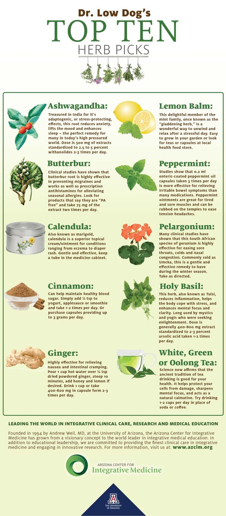 From the University of Arizona Center for Integrative Medicine (AzCIM.org) Dr. Tieraona Low Dog's - Top Ten Herb Picks #integrative #herbs @lowdogmd