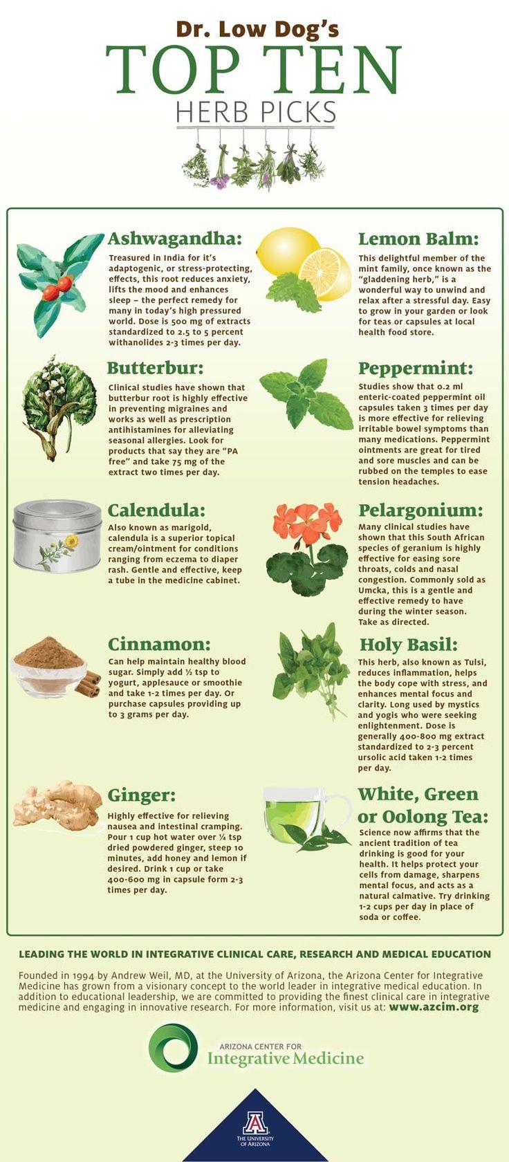 From the University of Arizona Center for Integrative Medicine (AzCIM.org) Dr. Tieraona Low Dog's - Top Ten Herb Picks #integrative #herbs @lowdogmd