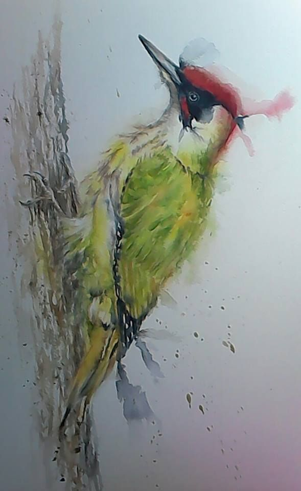 Green Woodpecker Original Painting By Sylvia Farrow - Arthouse Gallery
