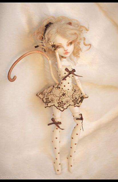 custom Catrine