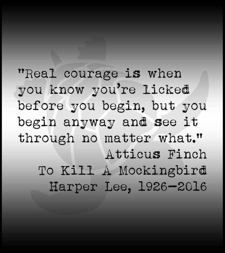 Reality in the novel to kill a mockingbird by harper lee