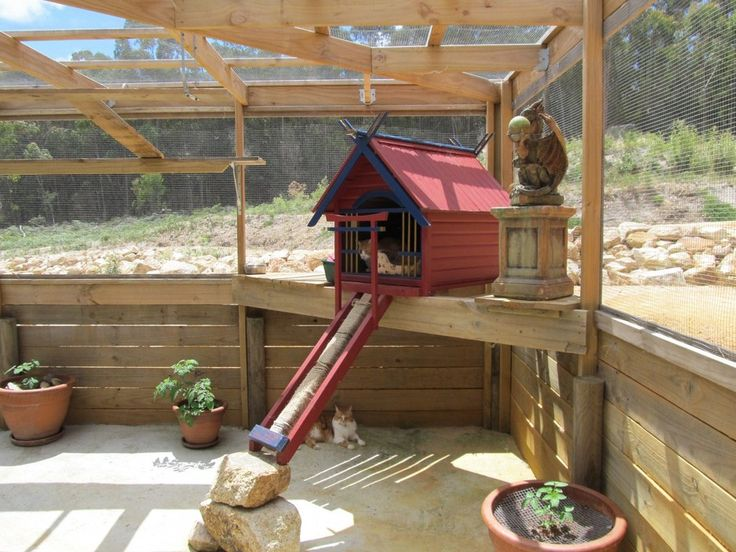Cattery secure outdoor play area - Wagabouts Boarding Kennels & Cattery, - wow !