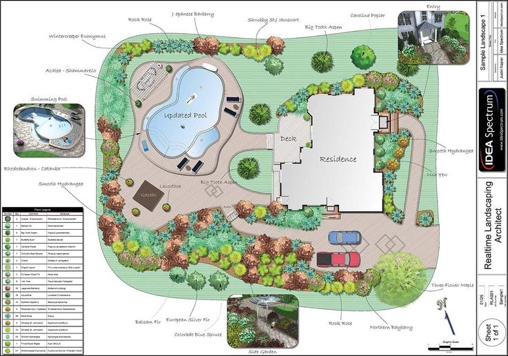 Complex landscape design with pool and deck