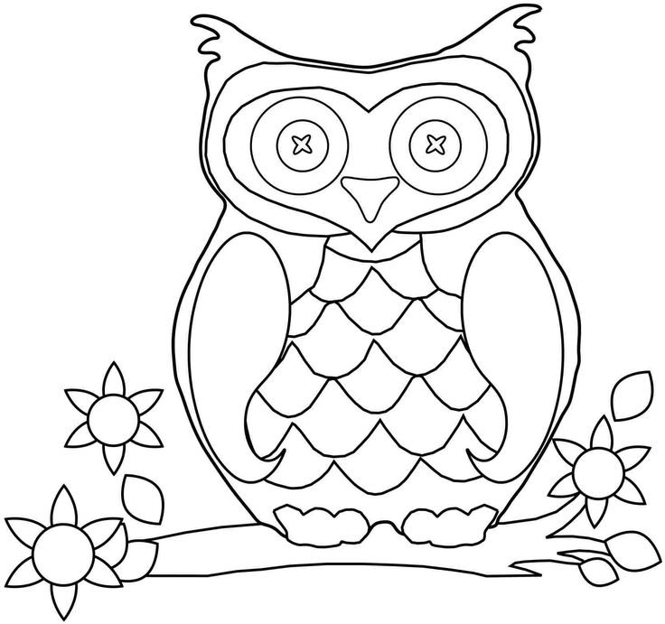 graphic regarding Printable Owl Pictures referred to as Printable Owl Envision Owl Printable Coloring Internet pages