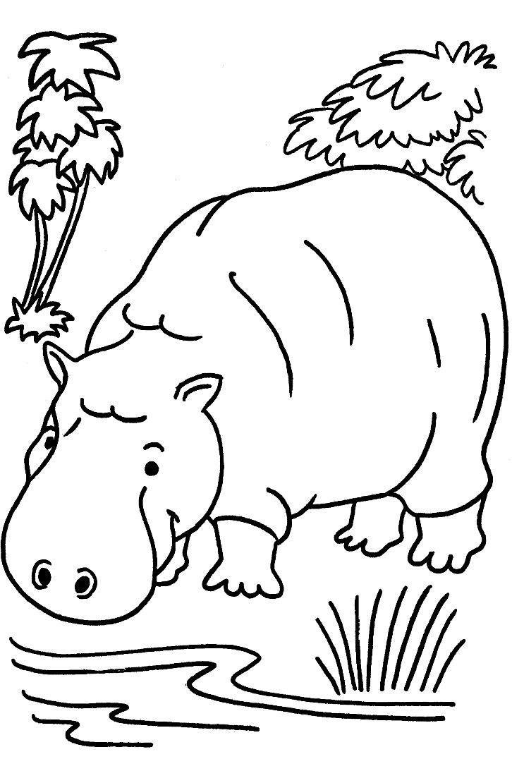 Free coloring pages of animals - Wild Animal Coloring Page Free Printable Hippo Coloring Pages Featuring Hippopotamus Coloring Page Sheets