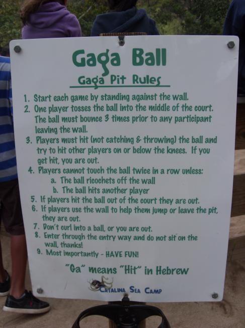 Pin Gaga Ball Game Rules On Pinterest