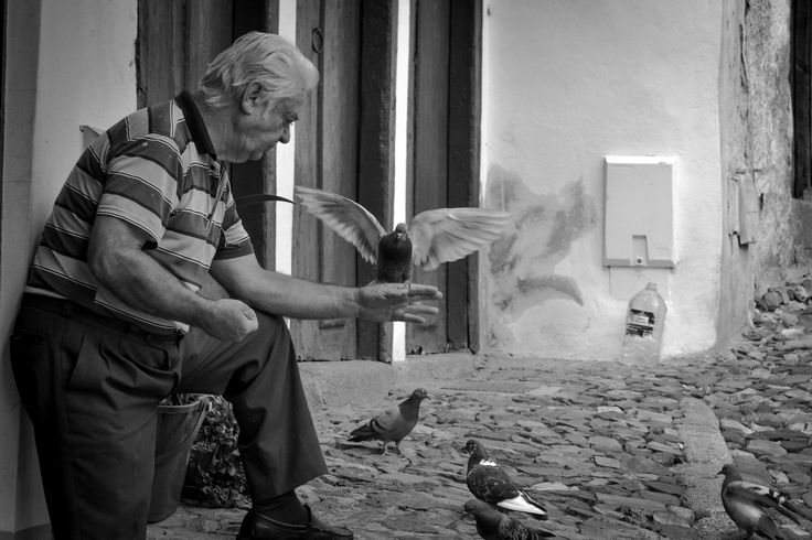 The innkeeper and the dove by César Guedes on 500px
