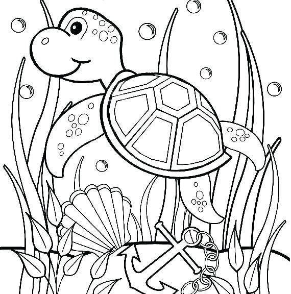 Simple Turtle Coloring Pages Ideas For Kids Free Coloring Sheets Turtle Coloring Pages Animal Coloring Pages Coloring Pages