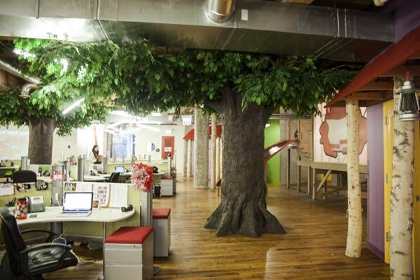 office tree. Red Frog Office Preliminary IC Ideas Pinterest Frogs Meeting Rooms And Tree Houses