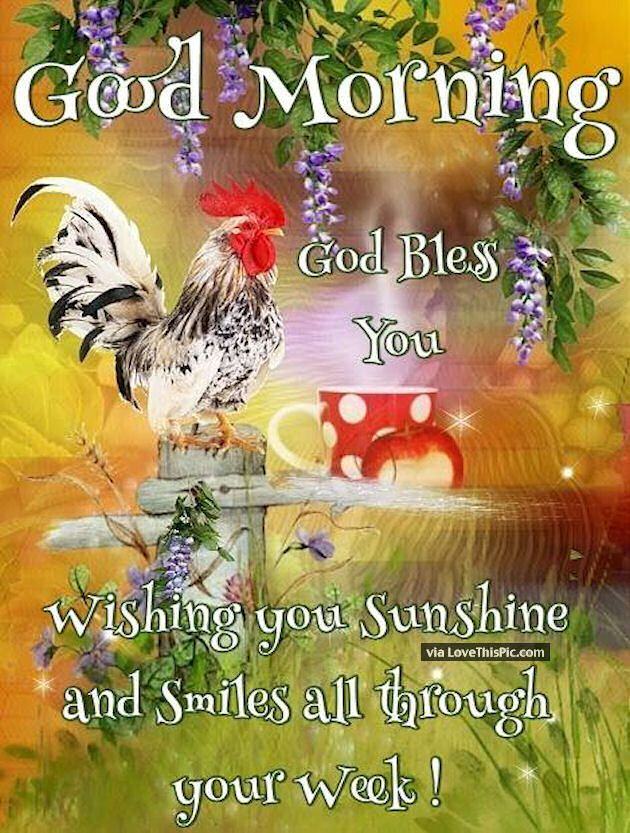Good Morning Wishing You Sunshine Through The Week Monday Good Mesmerizing Morni To True Love Sunshine