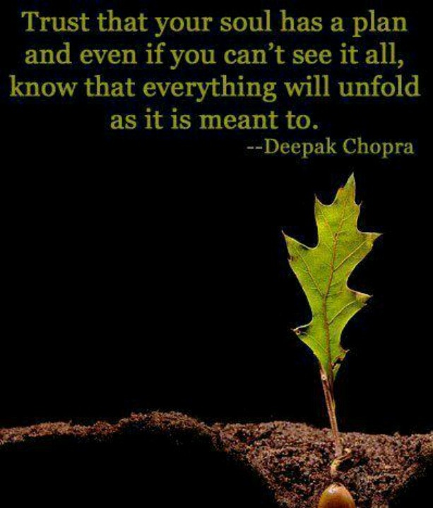 deepak chopra quotes - photo #19