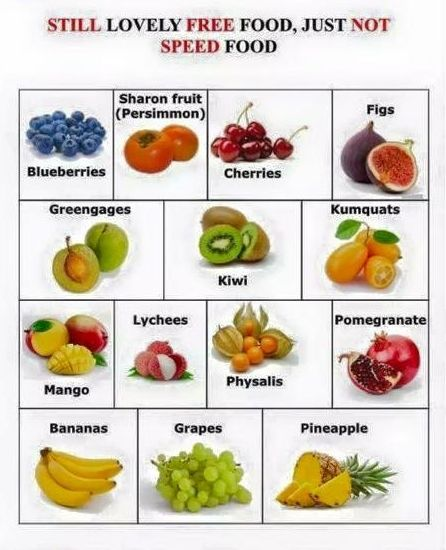 which foods are no longer free on the sp plan.jpg