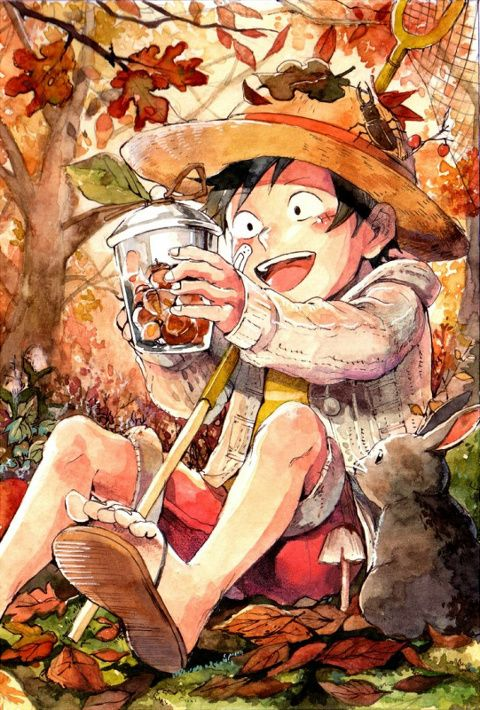 330 Best One Piece Images On Pinterest